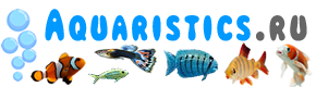 Aquaristics.ru