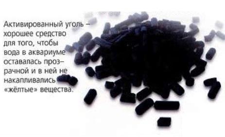 Активированный уголь - средство для чистоты аквариумной воды