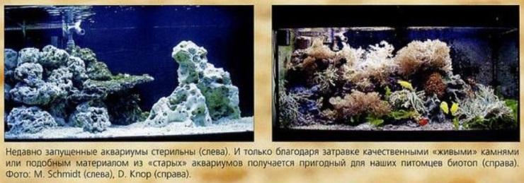 Аквариумы Шмидта и Кноппа