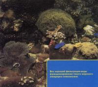 Фильтрация критически важна для аквариума