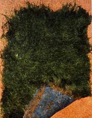 Газоны из мха на пластиковой сетке