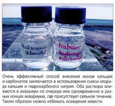 Хлорид кальция и гидрокарбонат натрия - эффективные способы внесения ионов кальция