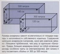 Как определить размеры аквариума