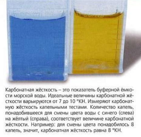 Карбонатная жидкость