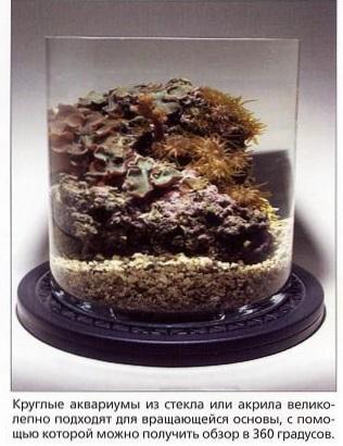Круглый наноаквариум из стекла или акрила