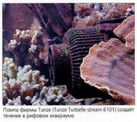 Помпа для создания течения в рифовом аквариуме