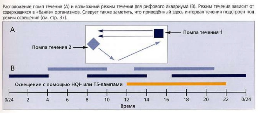 Расположение помп и режим течения