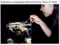 Рифовый аквариум Данижля Кнопа