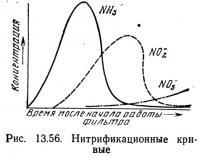 Рис. 13.56. Нитрификационные кривые
