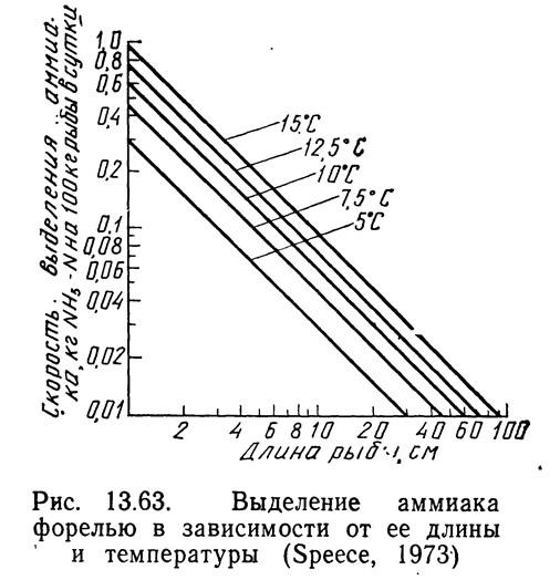 Рис. 13.63. Выделение аммиака форелью в зависимости от ее длины и температуры