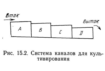 Рис. 15.2. Система каналов для культивирования
