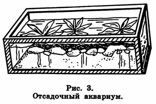 Рис. 3. Отсадочный аквариум