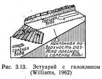 Рис. 3.13. Эстуарий с галоклином