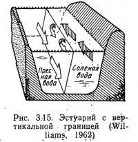 Рис. 3.15. Эстуарий с вертикальной границей