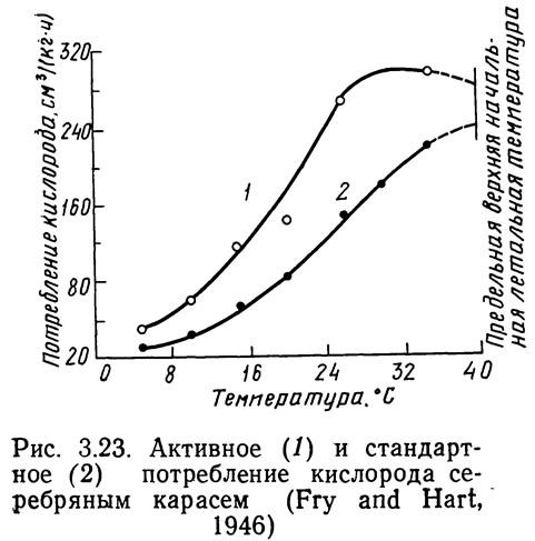 Рис. 3.23. Активное и стандартное потребление кислорода серебряным карасем