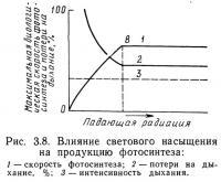 Рис. 3.8. Влияние светового насыщения на продукцию фотосинтеза
