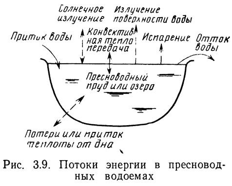 Рис. 3.9. Потоки энергии в пресноводных водоемах