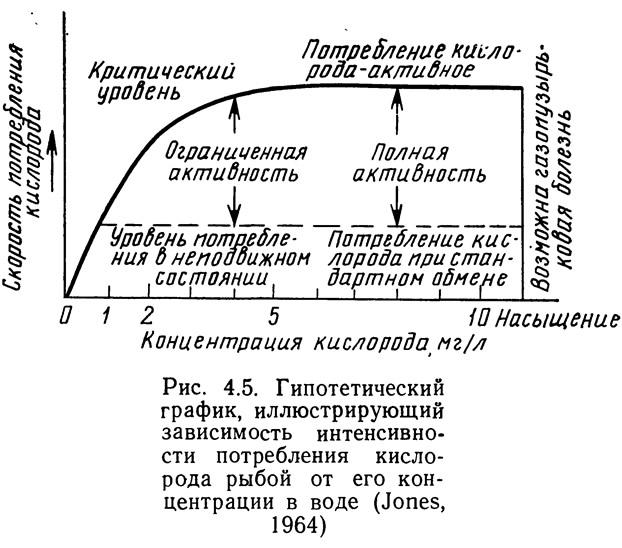 Рис. 4.5. Зависимость интенсивности потребления кислорода рыбой