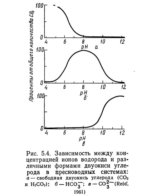 Рис. 5.4. Зависимость между концентрацией ионов водорода