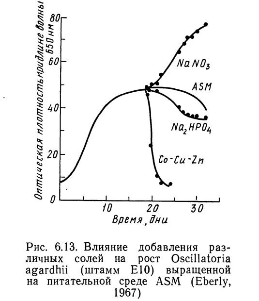 Рис. 6.13. Влияние добавления солей на рост Oscillatoria agardhii (штамм E10)