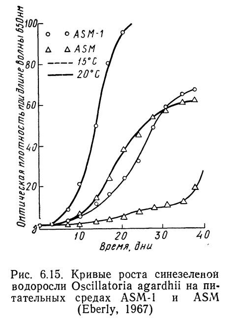 Рис. 6.15. Кривые роста синезеленой водоросли Oscillatoria agardhii