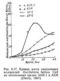 Рис. 6.17. Кривые роста синезеленых водорослей Oscillatoria baltica Up2