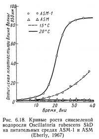 Рис. 6.18. Кривые роста синезеленой водоросли Oscillatoria rubescens SkD
