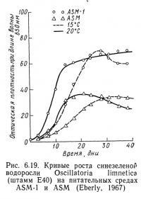 Рис. 6.19. Кривые роста синезеленой водоросли Oscillatoria limnetica