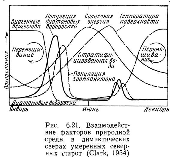 Рис. 6.21. Взаимодействие факторов природной среды в димиктических озерах