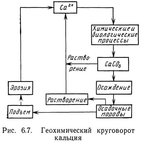 Рис. 6.7. Геохимический круговорот кальция