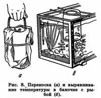 Рис. 8. Переноска и выравнивание температуры в баночке с рыбой