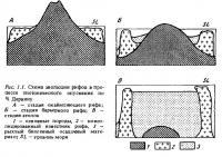 Рис.1.1. Схема эволюции рифов