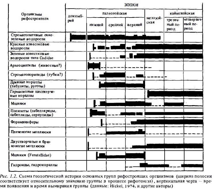 Рис.1.2. Основные группы рифостроящих организмов