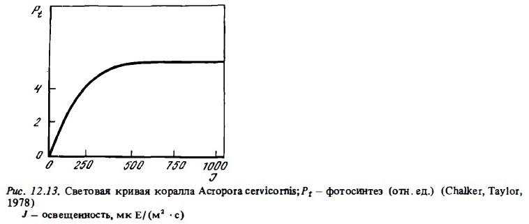 Рис.12.13. Световая кривая коралла Acropora cervicornis