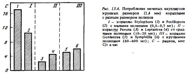 Рис.13.4. Потребление науплисов кораллами