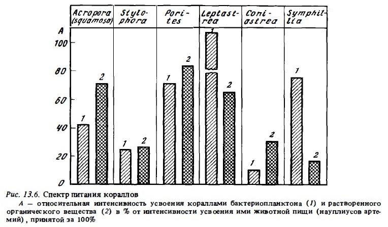 Рис.13.6. Спектр питания кораллов