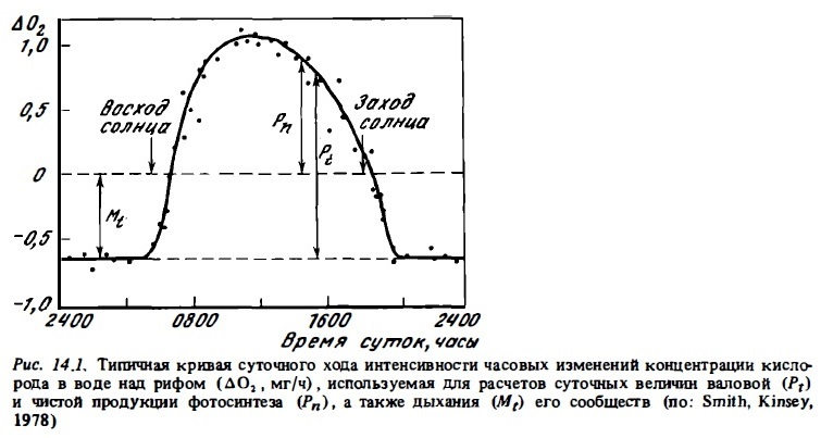 Рис.14.1. Часовые изменения концентрации кислорода