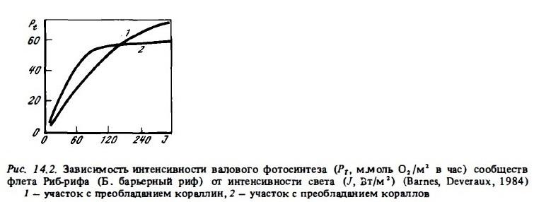 Рис.14.2. Зависимость фотосинтеза от интенсивности света