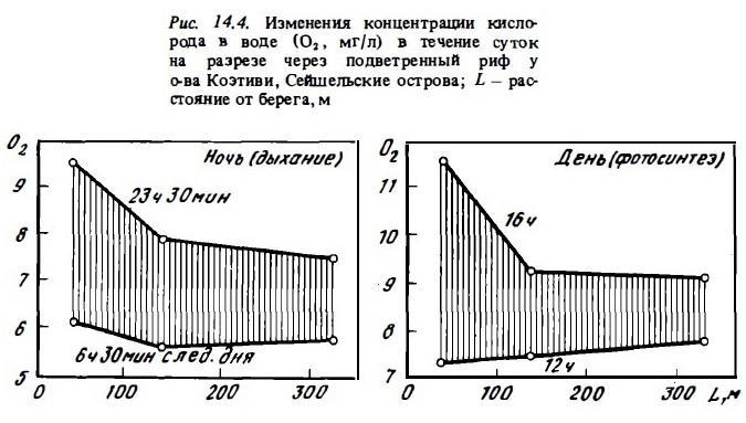 Рис.14.4. Концентарация кислорода в воде