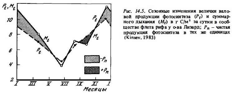 Рис.14.5. Сезонные изменения валовой продукции фотосинтеза