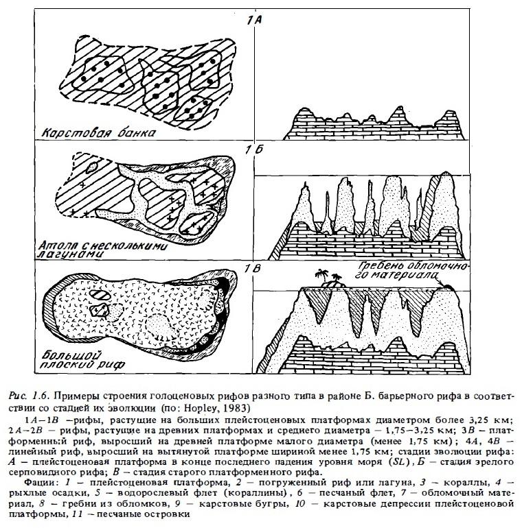 Рис.1.6. (начало) Строение голоценовых рифов по стадиям эволюции