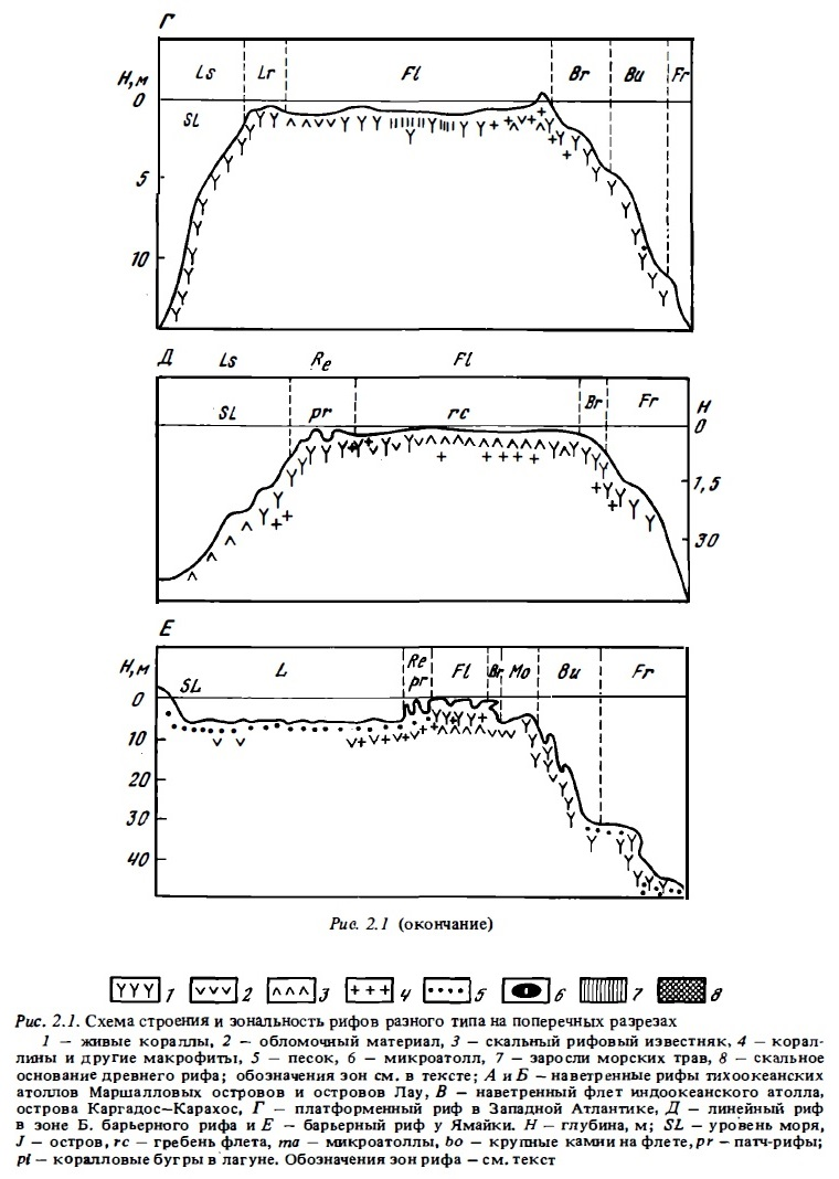 Рис.2.1. (окончание) Строение и зональность рифов