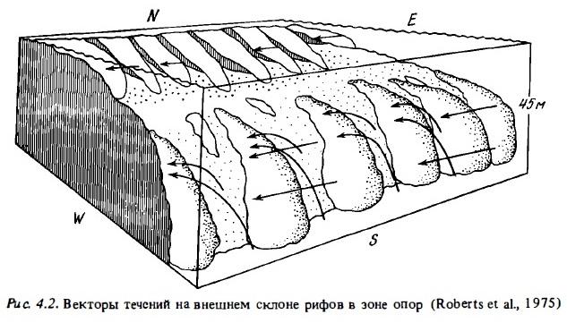 Рис.4.2 Векторы течений на склоне рифов