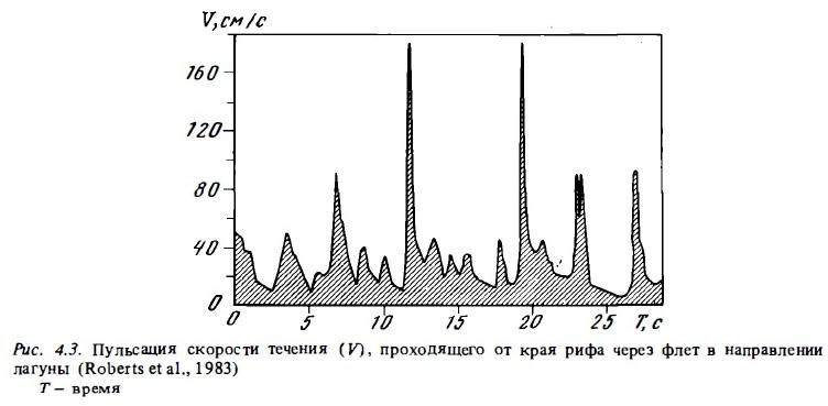 Рис.4.3. Пульсация скорости течения