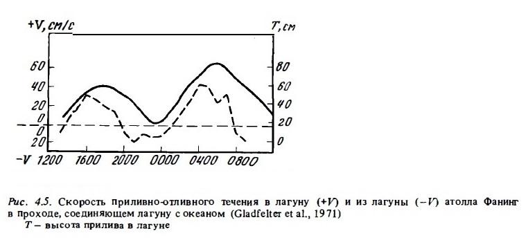 Рис.4.5. Скорость течения в лагуну и из лагуны
