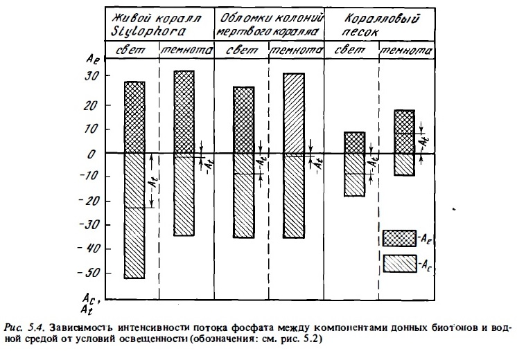 Рис.5.4. Зависимость интенсивности потокак фосфата