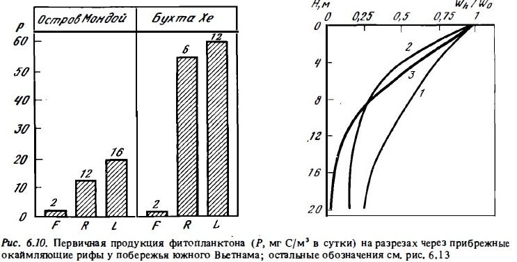 Рис.6.10. Первичная продукция фитопланктона