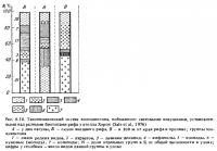 Рис.6.16. Таксонометрический состав зоопланктона
