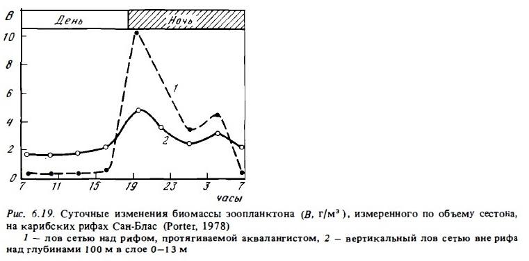 Рис.6.19. Суточные изменения биомассы планктона