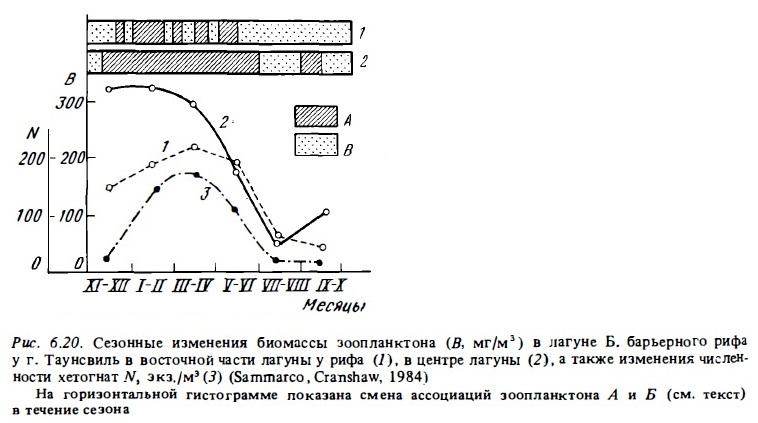 Рис.6.20. Сезонные изменения биомассы планктона
